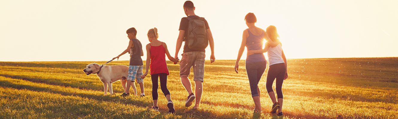 A family walking in a field together during golden hour.