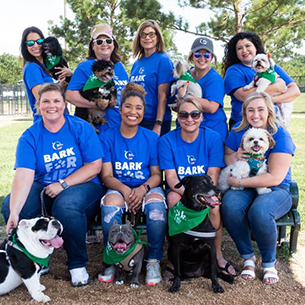 Bark for Life Committee Photo